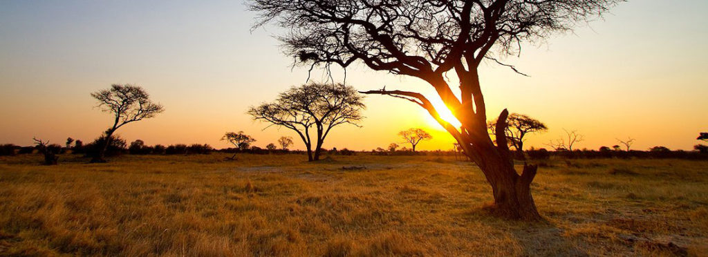 African Sky Hunting Adventures