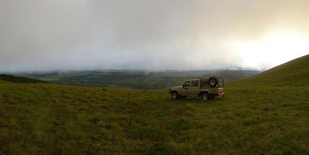 Huntershill Safaris