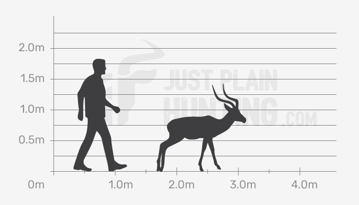 Just Plain Hunting Size Guide